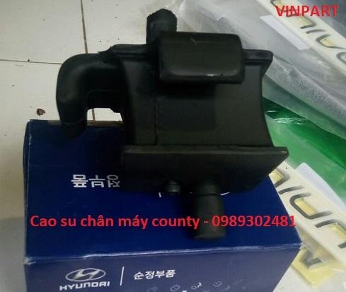CAO SU CHÂN MÁY COUNTY